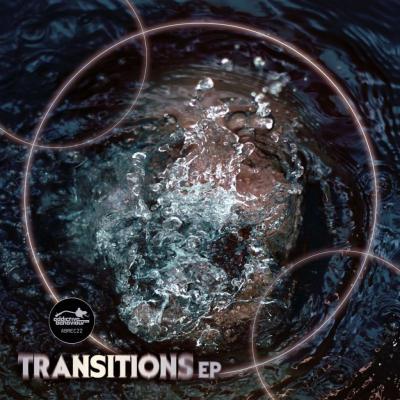 VA - Transitions