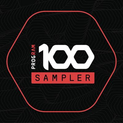 VA - ProgRAM 100 Sampler (2019) [FLAC]