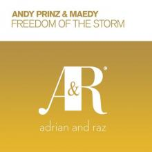 Andy Prinz & Maedy - Freedom Of The Storm (2021) [FLAC]