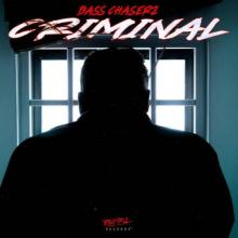 Bass Chaserz - Criminal (Extended Mix) (2021) [FLAC]