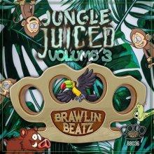 VA - Jungle Juiced Vol 3 (2021) [FLAC]