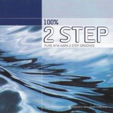 VA - 100 Percent 2 Step (2000) [FLAC]