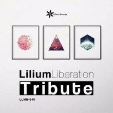 VA - Lilum Liberation Tribute (2015) [FLAC]