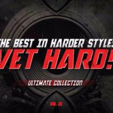 VA - Vet Hard! Ultimate Collection Vol 01 (2010) [FLAC]