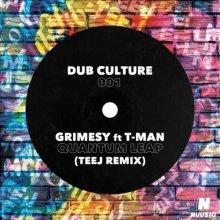 Grimesy & T-Man - Quantum Leap (Teej Remix) (2021) [FLAC]