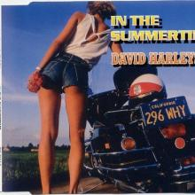 David Harleyson - In The Summertime (1993) [FLAC]