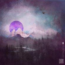 Beatmool - Falling (2020) [FLAC]