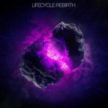 VA - Lifecycle: Rebirth (2021) [FLAC]
