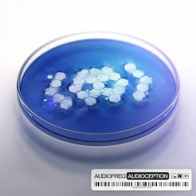 Audiofreq - Audioception (2013) [FLAC]