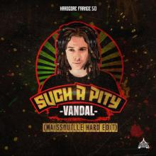 Vandal - Such A Pity (Maissouille Hard Edit) (2020) [FLAC]