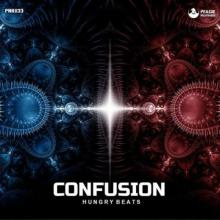 Hungry Beats - Confusion (2021) [FLAC]