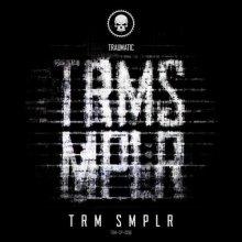 VA - Trm Smplr (2020) [FLAC]