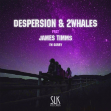 Despersion & 2Whales - Im Sorry (2021) [FLAC]