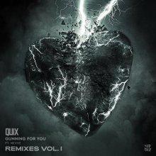 Quix & Nevve - Gunning For You (Remixes) (2020) [FLAC]