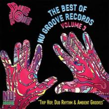 VA - The Best Of Nu Groove Records Volume 3 - Trip Hop, Dub Rhythm & Ambient Grooves (1995) [FLAC]