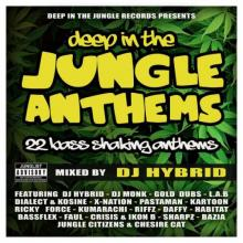 VA - Deep In The Jungle Anthems (2015) [FLAC]