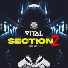 Vital - Section 2 / Hard Artifacts (2021) [FLAC]