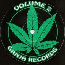 Hardware & DJ Hype - Volume 2 (1994) [FLAC]