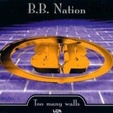 BB-Nation - Too Many Walls (1995) [FLAC]