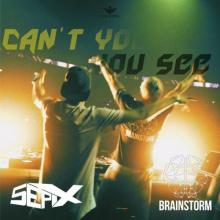 Brainstorm & Sepix - Can't You See (Original Mix) (2020) [FLAC] download