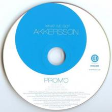 Akkersson - What I've Got (2003) [FLAC] download