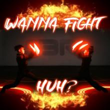 S3RL - Wanna Fight Huh (2020) [FLAC]