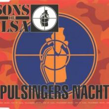 Sons Of Ilsa - Pulsingers Nacht (1995) [FLAC]
