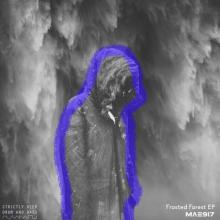 Mae917 - Frosted Forest (2020) [FLAC]