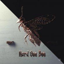 Kb5 & Xkoncert - Hard Gee Bee (2021) [FLAC]