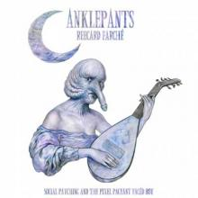 Anklepants - Social-Patching-And the pixel Pageant faced boy (2015) [FLAC]