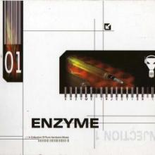 VA - Enzyme Injection 1 (2002) [FLAC]