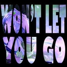 S3RL feat. Chi Chi - Won't Let You Go (Radio Edit & DJ Edit) [FLAC]