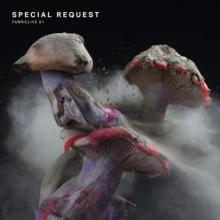 Special Request - Fabriclive 91