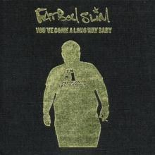 Fatboy Slim - You've Come A Long Way Baby