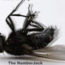 The NumberJack - Death Of A Fly (2009) [FLAC]