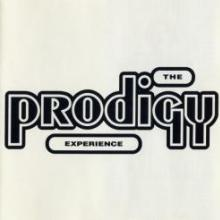 The Prodigy - Experience (1992) [FLAC]