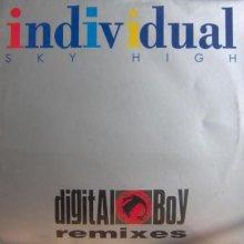 Individual - Sky High / Digital Boy Remixes (1995) [FLAC]