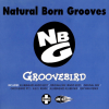 Natural Born Grooves – Groovebird (Remixes) (1997) [FLAC]