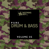 VA - Nothing But... Pure Drum & Bass, Vol 05 (2021) [FLAC]