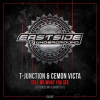 T-Junction & Cemon Victa - Tell Me What You See (2021) [FLAC]