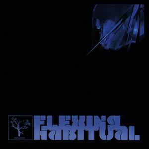 The Flashbulb - Flexing Habitual (2006) [FLAC]